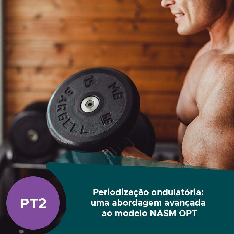 Imagem de Destaque PortugalFit Periodização Ondulatória