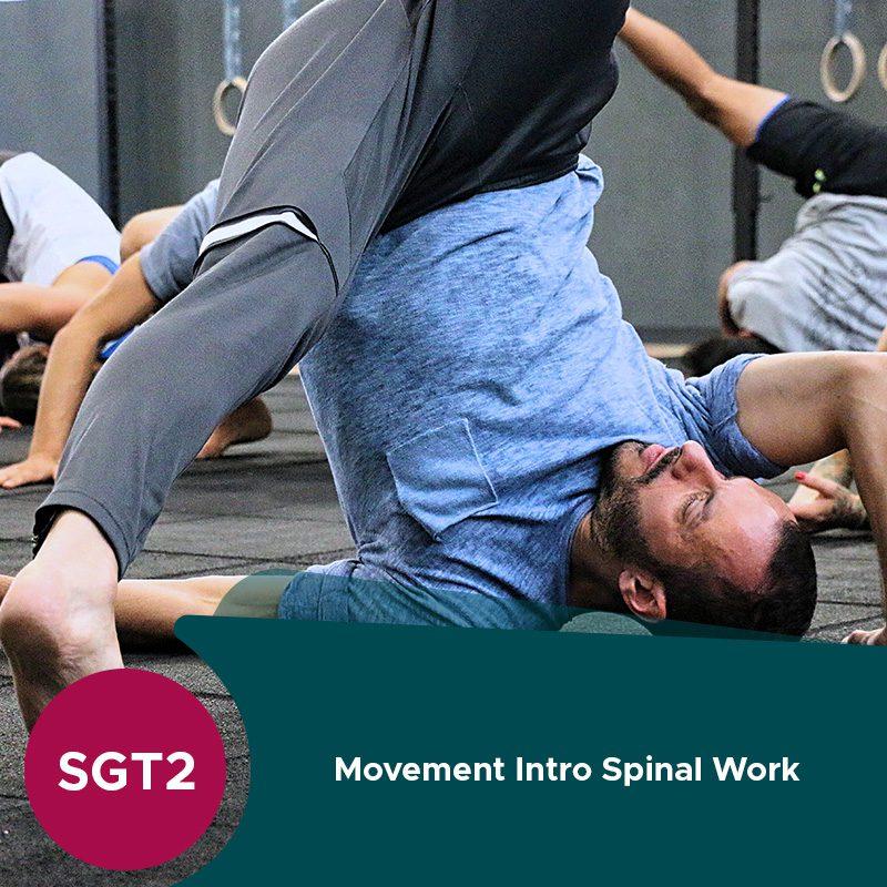 Imagem de Destaque PortugalFit Spinal Work